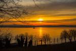 Sonnenuntergang über dem Bodensee. Auf dem See fährt ein Schiff. Im Vordergrund sind Bäume zu sehen