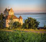 Foto der Burg Meersburg. Im Hintergrund ist der See abgebildet, im Vordergrund Weinreben