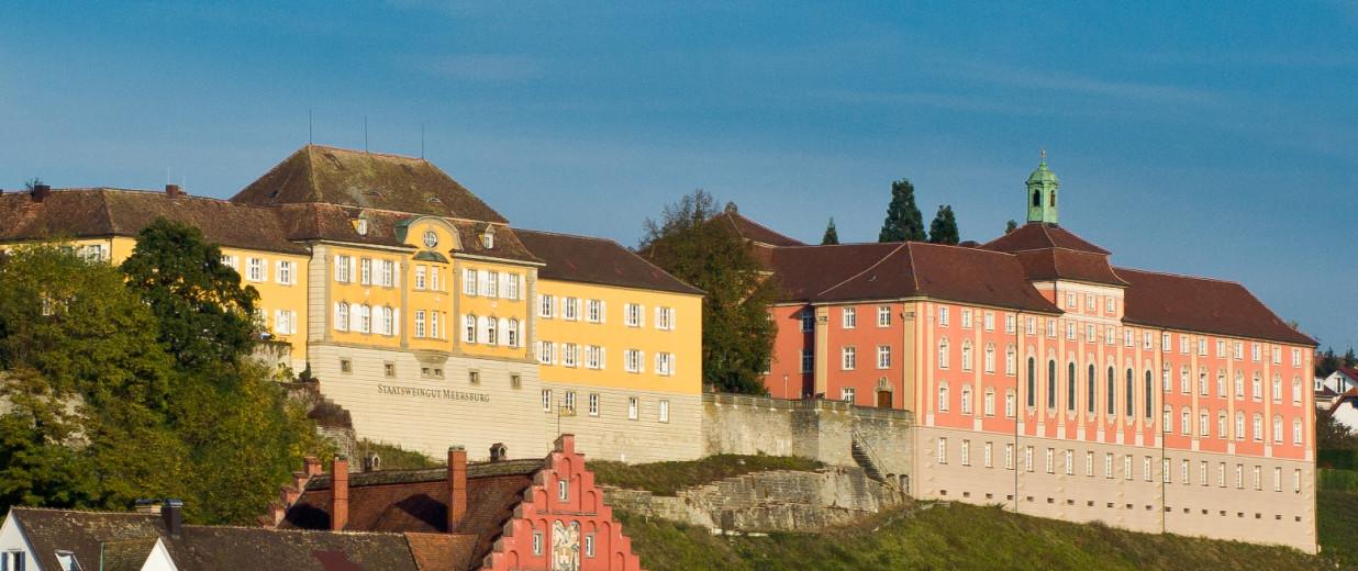 Panoramasicht auf das historische Gebäude des Droste-Hülshoff-Gymnasiums.  Das Gebäude ist in hellem Rot, nebenan steht das historische Gebäude des Staatsweingutes Meersburg in Gelb.