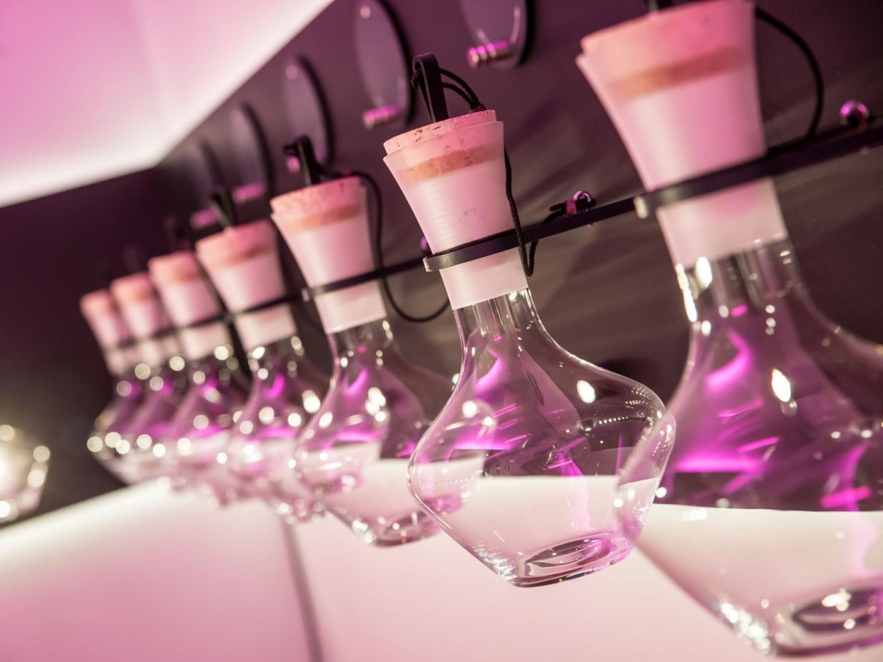 Aneinander aufgereihte, gläserne Duftflaschen hängen in einer Wandhalterung im vineum bodensee. Das Bild ist ganz in Pink getaucht. Die Gefäße stehen fördern die Geruchssinne, zur Wahrnehmung von Duftnuancen im Wein.