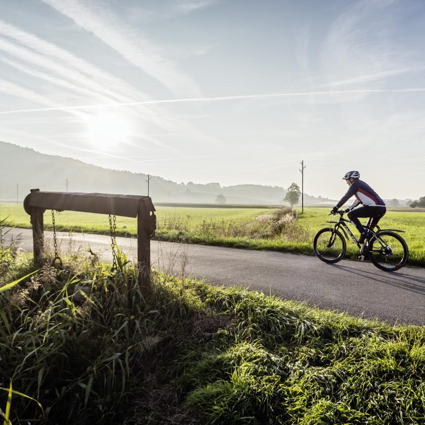Radfahrer im Grünen