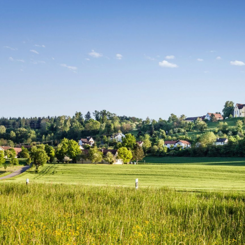 Foto einer großen, grünen Wiese auf den Teilort namens Baitenhausen.